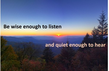 wise and quiet